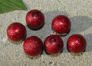 Ispärlor 14mm röda 6st